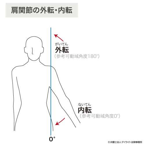 肩関節外転内転の図