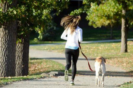 犬と散歩するイメージ画像